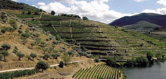 Ribeira_Sacra_Landschaft.jpg